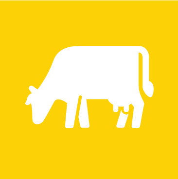 product cow